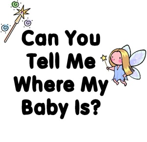 Can You Tell Me Where My Baby Is?