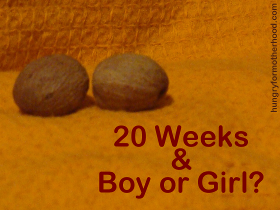 20-Weeks-Boy-Girl